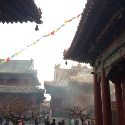 09.china_md