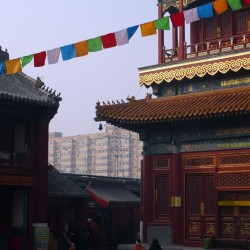 21.china